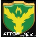Logo do grupo COC - ATTOM_IC 2